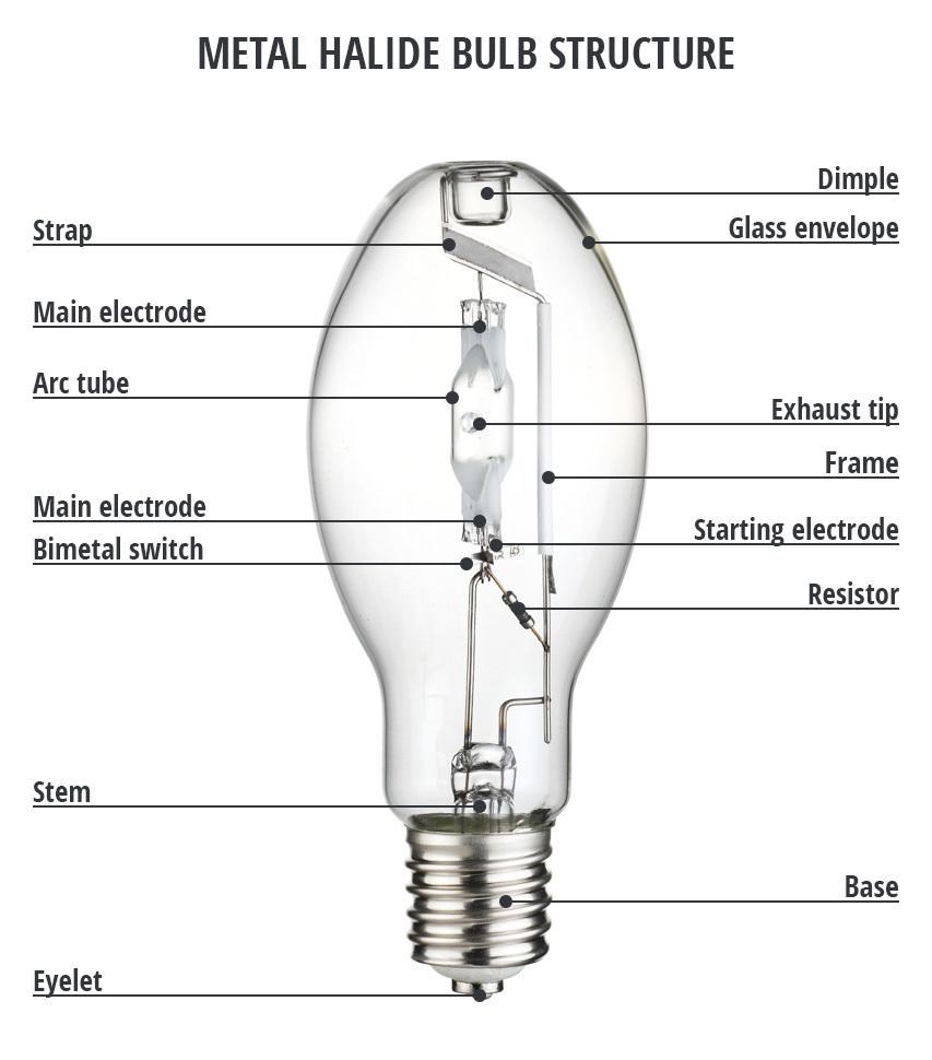 cấu tạo và nguyên lý hoạt động của bóng đèn cao áp metal halide