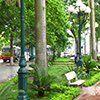 Cột đèn sân vườn DC05B LT05